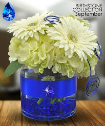 Spirit Halloween Sarasota Hours by September Birthstone Collection Sapphire Is The Gemstone For