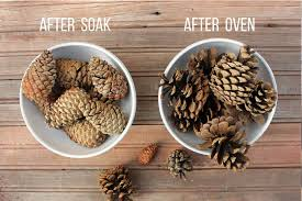 Pine Cone Christmas Trees For Sale by How To Clean Pine Cones For Crafts See Ya Bugs