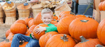 Pumpkin Patch Pittsburgh 2015 by 10 Fall Fests In Pittsburgh That You Must Check Out Berkshire