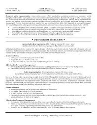 Sales Representative Resume Rep For