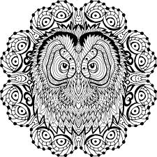 Download Coloring Page For Adults Owls Head In The Round Pattern Line