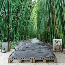 vlies fototapete dschungel bambus wald landschaft pflanzen
