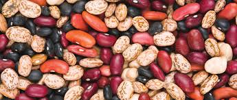VOLUME 24, ISSUE 3 WWW.NORTHARVESTBEAN.ORG MARCH 2018 Cheap Bean Bag Pillow Small Find Volume 24 Issue 3 Wwwtharvestbeanorg March 2018 Page Red Cout Png Clipart Images Pngfuel Joie Pact Compact Travel Baby Stroller With Carrying Camellia Brand Kidney Beans Dry 1 Pound Bag Soya Beans Stock Photo Image Of Close White Pulses 22568264 Stages Isofix Gemm Bundle Cranberry 50 Pictures Hd Download Authentic Images On Eyeem Lounge In Style These Diy Bags Our Most Popular Thanksgiving Recipe For 2 Years Running Opal Accent Chair Cranberry Products Barrel Chair Sustainability Film Shell Global