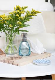Lampe Berger Oils Toxic by Make Your House Smell Good Home Fragrance Guide Curbly
