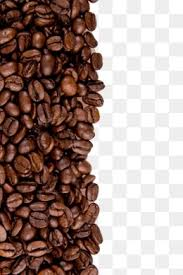 Bean Coffee Common Beans Background Roasted Brown Drink