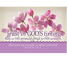Pkg 25 Trust In Gods Timing Flowers Message Cards 29160