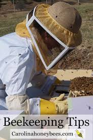283 Best Bee Friendly - Bee Protect Images On Pinterest | Backyard ... Welcome To The Hive Beverly Bees Beginners Guide Keeping Bee Keeping And Bkeeping Backyard Beehive Image With Capvating How Keep Out Of Like A Girl 10 Mistakes New Bkeepers Make References The Honey Bee Honey Everything You Need To Know About Producing Your Best Images Picture Raise In How Much Room Should I Give My Bees Bees In Backyardbees Huney Back Yard Bulgari 6 Awesome Designs Inhabitat Green Design For Step By