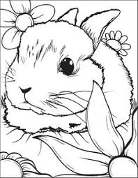 Bunny Rabbit Coloring Page 3