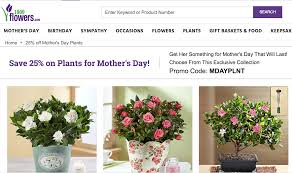 Featured Mother's Day Offers From Our Favorite Merchants ... 12 Best Florists In Singapore With The Prettiest Fresh Enjoy Flowers Review Coupon Code September 2018 Whosale Flowers And Supplies San Diego Coupon Code Fryouflowerscom Valentines Day 15 Off Fall Winter Flower Walls The Wall Company 1800flowerscom Black Friday Sale Free Shipping 16 Farmgirl Flowers Discount Code Off Cactus Promo Ladybug Florist Cc Pizza Coupons Discount Teleflorist Wet Seal Discount 22 1800 Coupons Codes Deals 2019 Groupon Unique Free Delivery Beautiful Fruit Of Bloom
