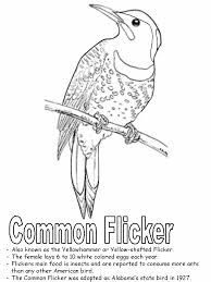 Yellowhammer Coloring Page