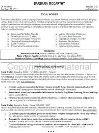 Social Worker Sample Resume Mesmerizing Entry Level With 6