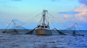 How To Get A Loan To Buy A Commercial Fishing Boat | Ask A Lender Equipment Finance Services Semi Truck Fancing Loans That Will Drive Your Business Forward Yes Used Commercial Trucks Export Specialist Isuzu Of America Inc Helping Put Trucks To Work For Cssroads Lease Heavy Duty Mk Centers Uncovering The Best Guaranteed Dump Vehicle Business Autos Ask A Lender Cag Capital How Get Loan Buy Fishing Boat