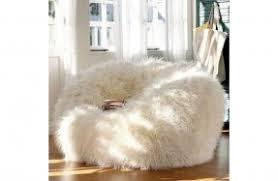 Fur Bean Bags 1