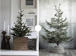Potted Christmas Trees For Sale by The Plumed Nest Pins Of The Week Potted Christmas Tree