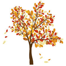Fall Trees And Leaves Clip Art Picture Tree With Leaves