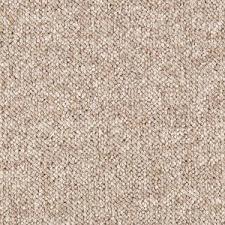 Par Rating Carpet by Trafficmaster Carpet Sample Tidewater Color Hearthstone Loop 8