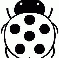 Good Ladybug Coloring Sheet 33 With Additional Seasonal Colouring