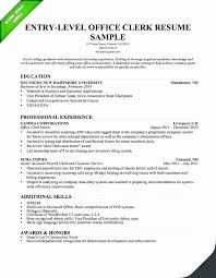 Entry Level Resume Summary Examples Idealstalist