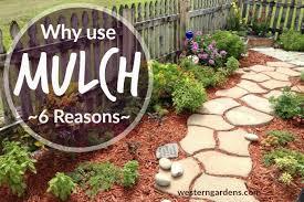 Marvelous Garden Mulch Western Garden Centers