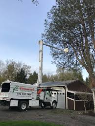 Tamarack Tree Service LLC – Taking Pride In Honest Quality Tree Service 1999 Intertional 4900 Bucket Forestry Truck Item Db054 Bucket Trucks Chipdump Chippers Ite Trucks Equipment Terex Xtpro6070orafpc Forestry Truck On 2019 Freightliner Bucket Trucks For Sale Youtube Amherst Tree Warden Recognized As Of The Year Integrity Services Sale Alabama Tristate Chipper For Cmialucktradercom