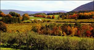 Pumpkin Patch Western Massachusetts by Massachusetts Fall Foliage Scenic Drives Sightseeing Tours