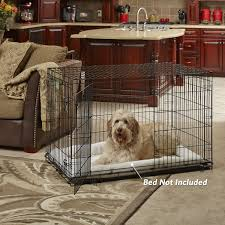 Amazon MidWest ICrate 42 Double Door Folding Metal Dog Crate W Divider Panel Floor Protecting Roller Feet Leak Proof Plastic Tray