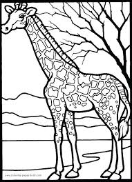 Full Image For Giraffe Color Page Animal Coloring Pages Plate Sheetprintable