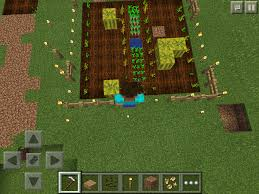 Minecraft Pumpkin Seeds Wont Plant by How To Grow Melons And Pumpkins In Minecraft Pe U2013 Phoneresolve