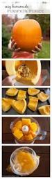 Roasting Pumpkin For Puree by 124 Best Savory Pumpkin U0026 Butternut Squash Recipes Images On
