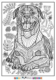 Free Printable Rottweiler Coloring Page Available For Download Simple And Detailed Versions Adults