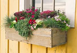 Window Box Planter Ideas Screenshot