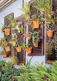 mur de separation exterieur mur végétal et autre jardin vertical extérieur et intérieur