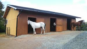 24x36x10 Equine Barn Full Restoration And Addition (EEM14022 ... Horse Barn Designs With Arena Google Search Pinteres Period Barnequine Equine5 Quality Structures Inc Barn Equine First Aid Medical Kit Large Station Pedernales Veterinary Center Red Outfitters In Lebanon Pa 717 8614 37x60x12 Mosely Va Era11018 Superior Buildings Free Images Shed Summer Spring Hall Facade Outside 36x10 Harrisonburg Ems16026 Farm Animal Ranch Brown Stallion The Surgery Landrover On Standby At Beach Polo Event