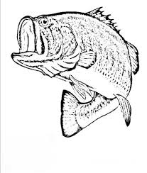 Bass Coloring Pages 45