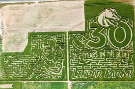 Pumpkin Patch Caledonia Il For Sale by Linder Farms U2013