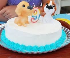 cake decorating ideas for