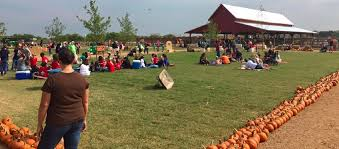Celina Pumpkin Patch Directions by Preston Trail Farms Gunter Tx Top Tips Before You Go With