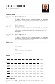 Financial Accountant Resume Example