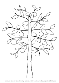 Learn How to Draw an Apple Tree Trees Step by Step Drawing