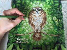 Sharing How I Color The Leaves Background With Prismacolor Premier Colored Pencils Coloring Book Secret Garden By