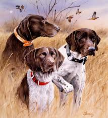 German Shorthaired Pointer Shed Hunter by Hunting Dog Prints Art Great Hunting Dogs
