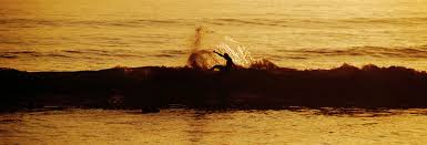 contact form maroc surf c surf and holidays in morocco