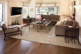 houzz area rugs living room rug designs