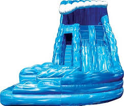 BIS 007 Giant Inflatable Water Slide With Pool For Sale