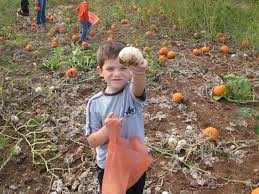 Frederick Maryland Pumpkin Patch by Photos Of Our Childcare Center In Frederick Md The Learning Bee