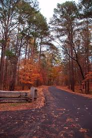 Best 25 Natchez Trace Images On Pinterest