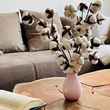 livslyst 3x baumwoll zweige baumwolle natürlich getrocknet 10 köpfe pro stiel dekoration deko inneneinrichtung interior zu hause wohnzimmer