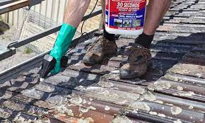 how to clean roof tiles bunnings warehouse