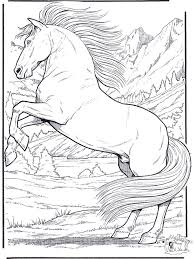 Realistic Animal Coloring Pages Horse