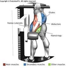 Captains Chair Leg Raise Bodybuilding by Abductors Multi Hip Side Leg Raises Legs Pinterest Leg